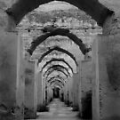 Arches in Black &amp; White by Haggiswonderdog