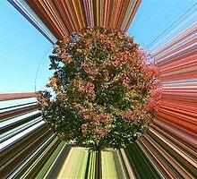 WeatherDon2.com Art 124 by dge357