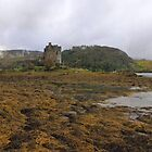 """Autumn at Eilean Donan 11"" by peaky40"