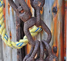 Rusted Hooks by joevoz