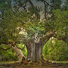 Tree of life by theflostudio