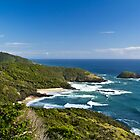 Looking North From Smoky Cape Lighthouse at Arakoon by kwill