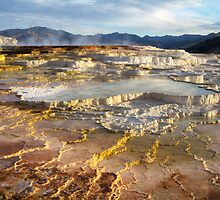 Mammoth Hot Springs, Yellowstone National Park USA  by Jennifer Bailey