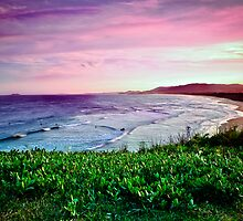 Shellys Beach, Look-At-Me-Know-Headland, Emerald Beach by Normf