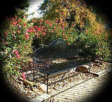WeatherDon2.com Art 159 by dge357