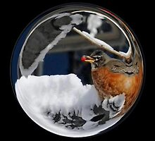 Cindy's Snow Globe's 10 by dge357