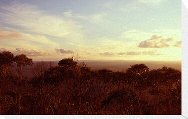 View  from Mt Macedon by jainiemac