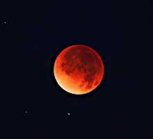 Full Moon Eclipse Dec 10 by SB  Sullivan