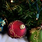 Colors of Christmas by Christopher Gaines
