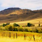 Oregon Countryside by aussiedi