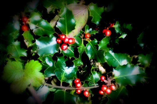 Ripe and Seasonal by missmoneypenny