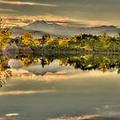 Golden Dreams At Golden Ponds by Greg Summers