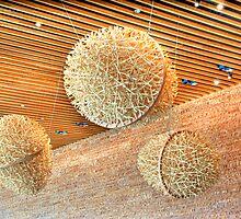 Wooden Eggs by Michael Rubin