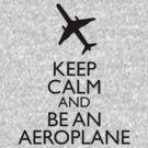 Keep Calm and be an aeroplane by flaminska