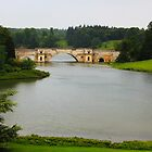 Blenheim Bridge by Caprice Logan