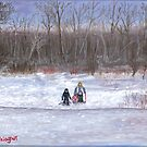 Christmas sledding in Wisconsin by Dan Wagner