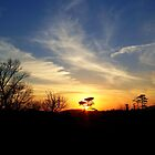 Winter Sunset by James Brotherton