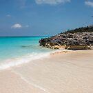 Beach on Rose Island, Bahamas by Shane Pinder