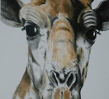 Tinted Charcoal Giraffe by gogston