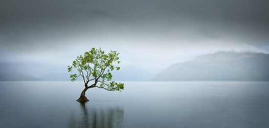 Solitude by Neville Jones