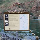 Ord River Dam/ Lake Argyle  by Virginia  McGowan