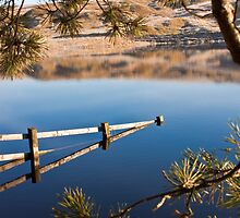 Reflections by Geoff  Hargreaves