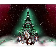 Please Come Home For Christmas Photographic Print