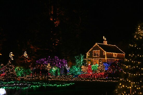 Bright Lights of Christmas #2 by Chappy