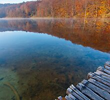 Looking at the lake by Ivan Coric