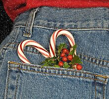 Holiday Pocket by Maria Dryfhout