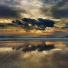 The Magic Of The Morning by manojmurugan