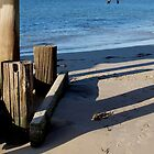 Busselton Shadows by kalaryder