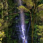 Erskine Falls Beauty by LJ_©BlaKbird Photography