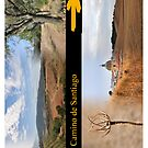 El Camino de Santiago iPhone Case by Hilda Rytteke