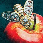The red Apple by Angela Bruno