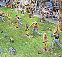 Wood Chopping Competition by JaninesWorld