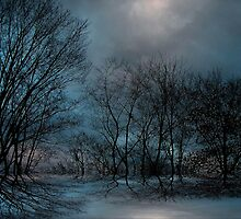 Moonlight ! by Elfriede Fulda