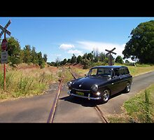 Squareback on Railway Track by Bami