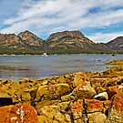 View to The Hazards, Freycinet National Park, Tasmania by TonyCrehan
