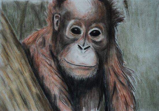 Tinted charcoal orangutan by gogston