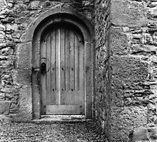 Ashtown Castle Door, Dublin, Ireland by Dave  Kennedy