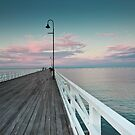 The Pier by Larissa Dening