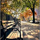 Park Bench on Morningside Drive by Forrest Harrison Gerke