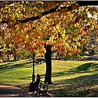 Central Park in Autumn by Forrest Harrison Gerke