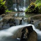 Mokoroa Falls Collection # 4 by Michael Treloar