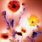 ~ Life Is Light ~ by Alexandra  Lexx
