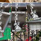 Free Humanity, Free WikiLeaks, outside the Royal Courts Of Justice, Julian Assange hearing 5 December 2011 by Jason Gleeson