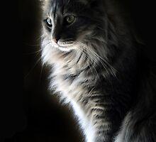 My Beautiful Girl by Carolyn  Fletcher