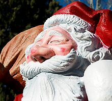 The profile of Santa Claus by catiapancani