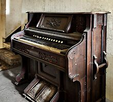 The Piano by Jean-Claude Dahn